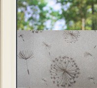 Decorative | Premium | Dandelion