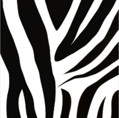 Decor | Zebra|
