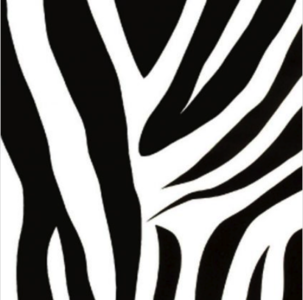 Decor | Zebra|